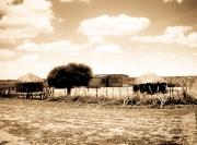 Kalahari, village