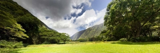 inside of Waipio valley, Hawaii