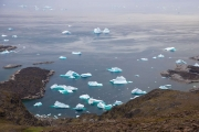 Icebergs in a bay