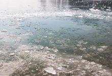 Photo of Teplota vody v jazerách v Bratislave 2018/2019 – pre otužilcov