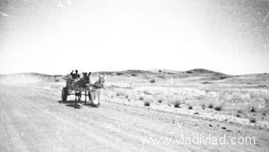 Photo of Namibia: North