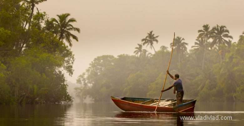 Photo of India: Kerala Ayruveda