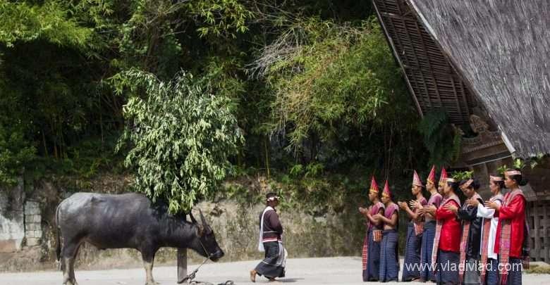 Photo of Indonesia: Sumatra – Batak tribe
